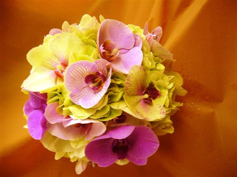 Bouquet Con Ortensie Peonie E Fiori Vari La Boutique Del  Review Ebooks